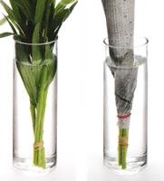 花の茎を深い水につけている
