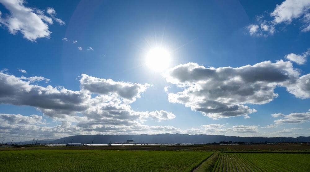 埼玉県深谷市の景色